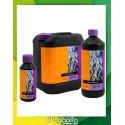 Estimulador Radicular B'Cuzz