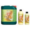 PK 13-14 estimulador de floración