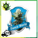 Dance World Medicinal