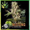 Missing in Barcelona (M.I.B)