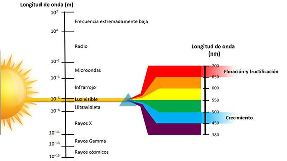 Espectro solar y longitud de su onda