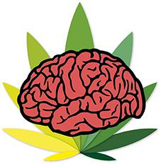 marihuna cerebral