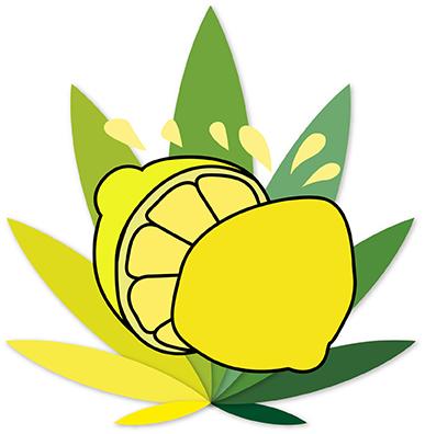 sabores citricos
